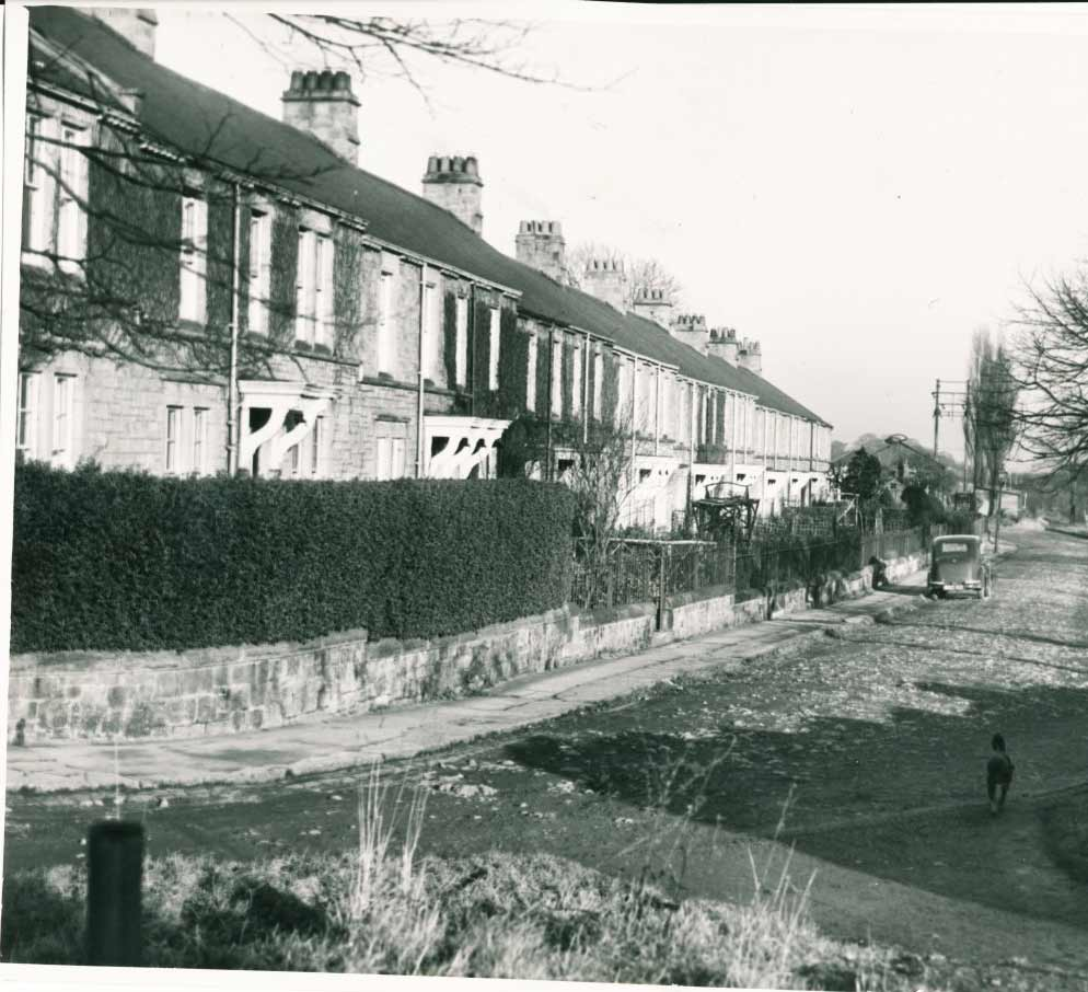 Stephenson's Terrace in  January 1947
